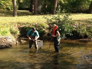 Steppingstone Shiawassee - workers in the river