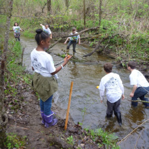REP Biological Parameters Physical - students in water collecting samples