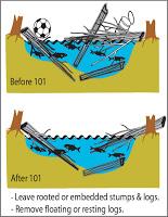 Managing Woody Debris diagram