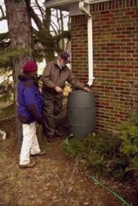 Photo of a yard rain barrel